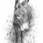 Donkey By Nolon Stacey @ The Smithy Gallery Kettlewell